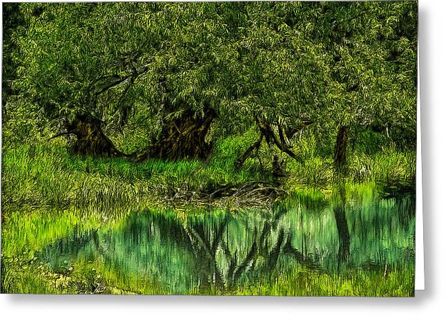 Mystical Landscape Greeting Cards - Mystic Woods Reflection Pond Greeting Card by Joel Bruce Wallach