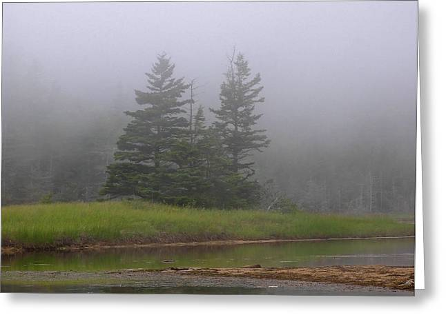Maine Beach Greeting Cards - Mystical Acadia National Park Greeting Card by Juergen Roth