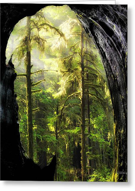 Mystical Landscape Greeting Cards - Mystical Forest Opening Greeting Card by Leland D Howard