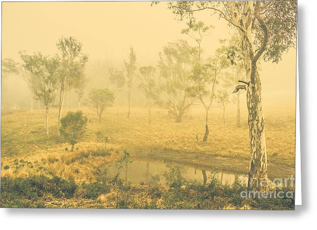Mystical Lake Greeting Card by Jorgo Photography - Wall Art Gallery
