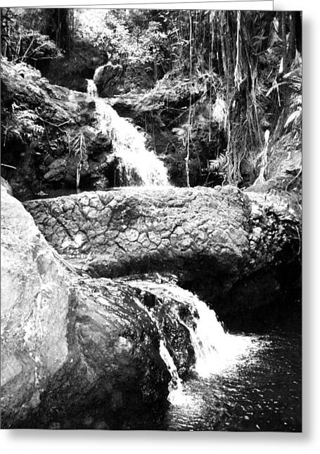Mystical; Stream; Waterfall; Landscape; Tropical; Pool; Nature Greeting Cards - Mystical Magical Waterfall Greeting Card by Halle Treanor