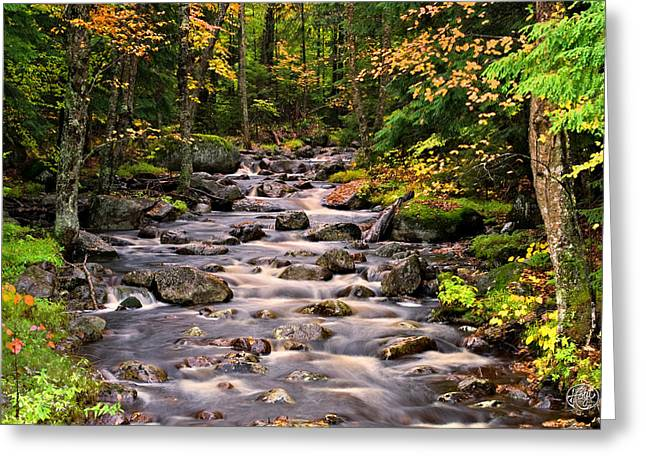 Mystical Mountain Stream Greeting Card by Brad Hoyt