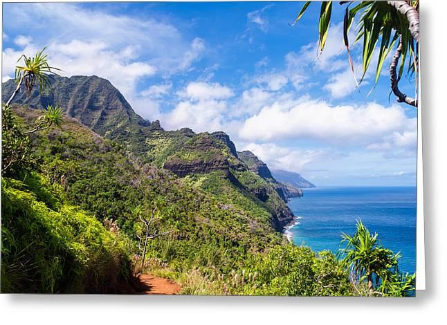 Na Pali Coast Kauai Greeting Card by Brian Harig