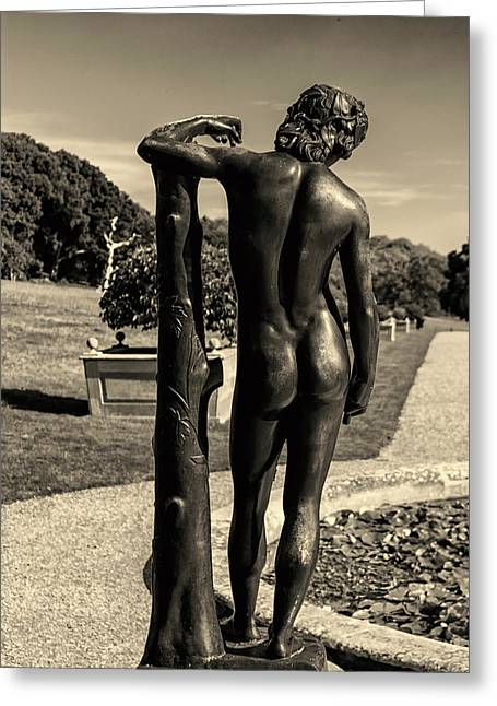 Naked Greeting Card by Martin Newman
