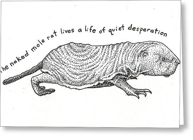 Naked Drawings Greeting Cards - Naked Mole Rat Greeting Card by Christy Beckwith