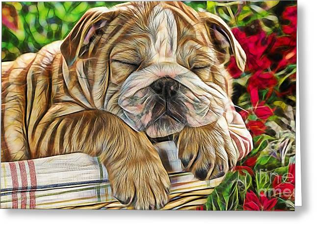 Nap Greeting Card by Marvin Blaine