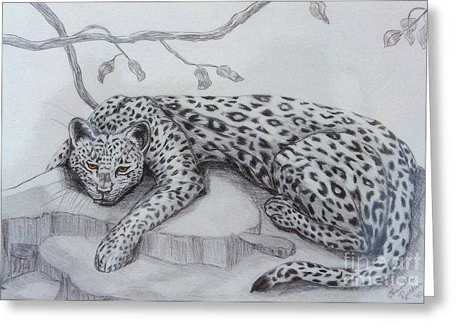 Wild Life Pastels Greeting Cards - Nap Time for Big Cat Greeting Card by Nancy Rucker