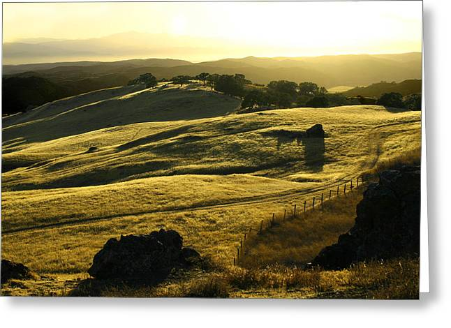 Nappa Valley Greeting Cards - Napa Valley Greeting Card by Hans Jankowski