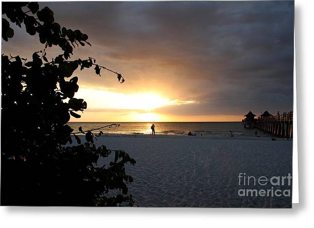 Naples Town Pier Greeting Cards - Naples Pier Sunset Greeting Card by Christiane Schulze Art And Photography