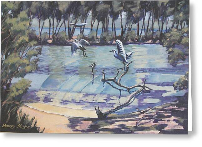 Murray Mcleod Paintings Greeting Cards - Narrabeen Lakes 2 Greeting Card by Murray McLeod