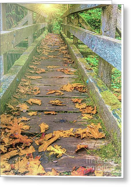_art Greeting Cards - Narrow Path Greeting Card by Jean OKeeffe Macro Abundance Art