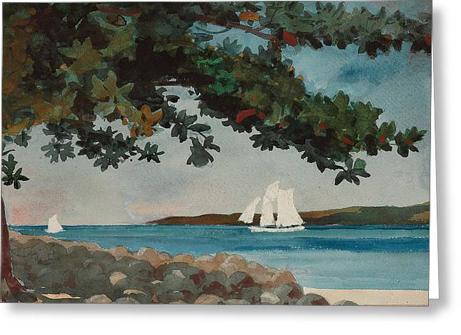 Blue Sailboat Greeting Cards - Nassau   Water and Sailboat Greeting Card by Winslow Homer