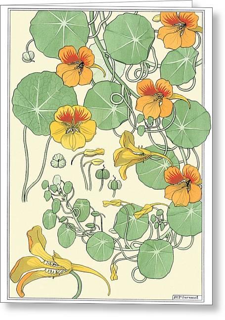 Museum Paintings Greeting Cards - Nasturtium Greeting Card by Eugene Grasset