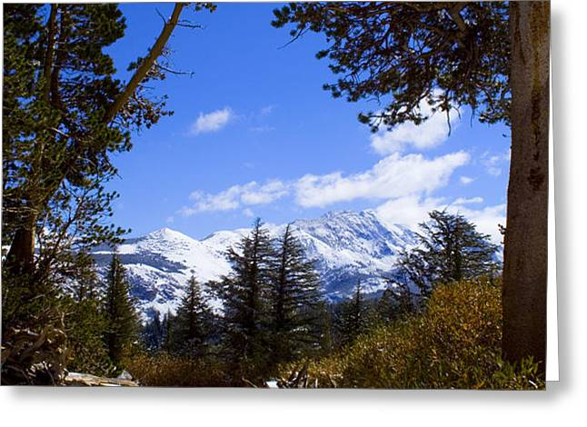 Naturally Framed Greeting Card by Chris Brannen