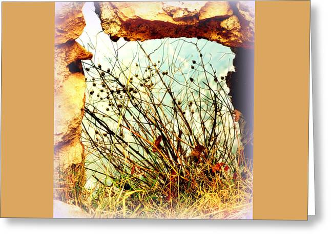 Temperament Greeting Cards - Nature A Greeting Card by Hilde Widerberg