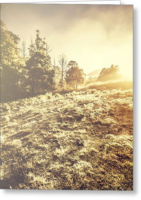 Nature In A Frosted Winter Scene Greeting Card by Jorgo Photography - Wall Art Gallery