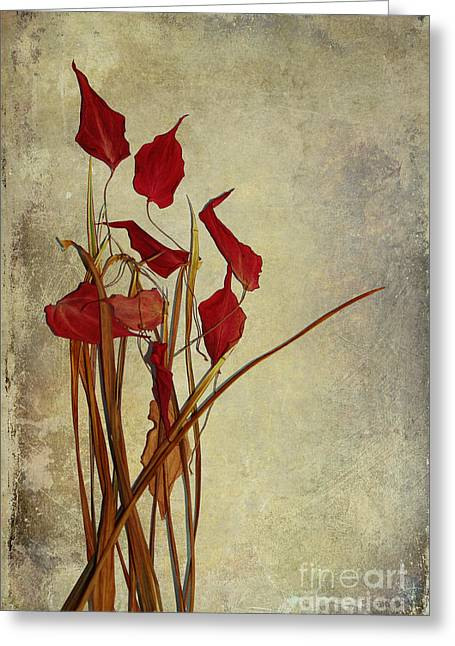 Textured Walls Greeting Cards - Nature Morte du Moment t01 Greeting Card by Variance Collections