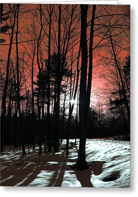 Landscape Framed Prints Greeting Cards - Nature Of Wood Greeting Card by Mark Ashkenazi