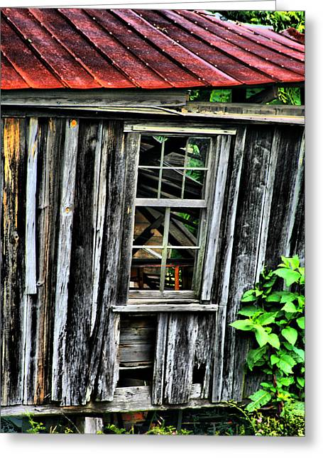 Tin Roof Greeting Cards - Nature Reclaimeth Greeting Card by Greg Sharpe