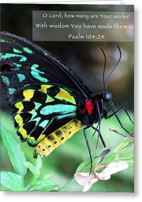 Scripture Cards Greeting Cards - Nature Series Greeting Card by Ginger Geftakys