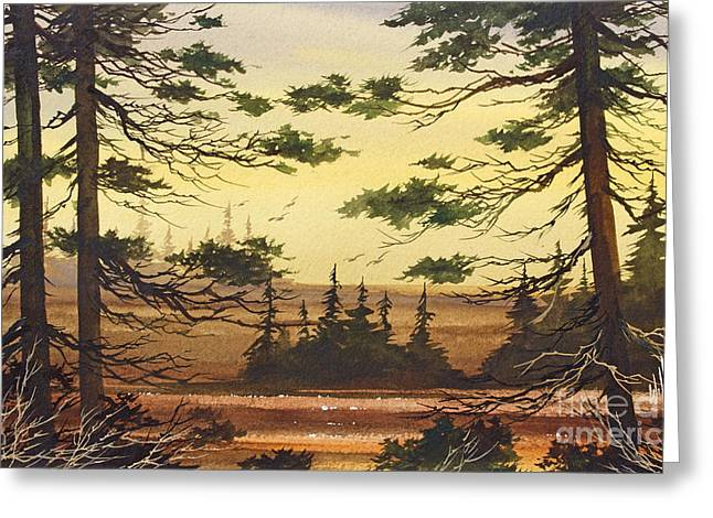 Nature Framed Prints Greeting Cards - Nature so Lovely Greeting Card by James Williamson