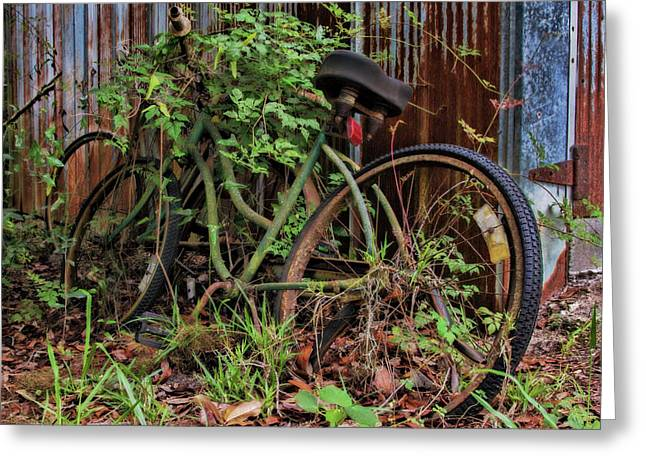 Nature Wins - Vintage Bicycles And Vines Greeting Card by Mitch Spence