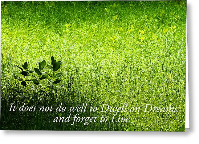 Nature With Inspirational Saying Greeting Card by Donald  Erickson