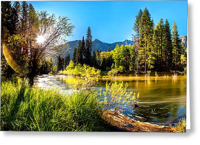Nature's Awakening Greeting Card by Az Jackson
