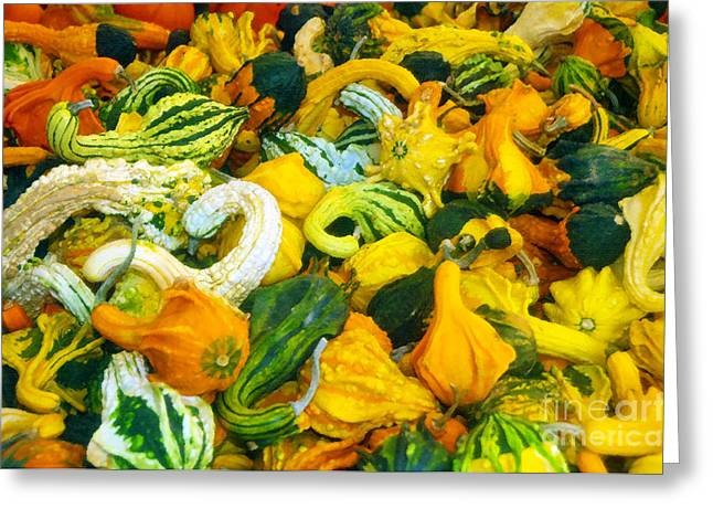 Harvest Art Greeting Cards - Natures bounty Greeting Card by David Lee Thompson