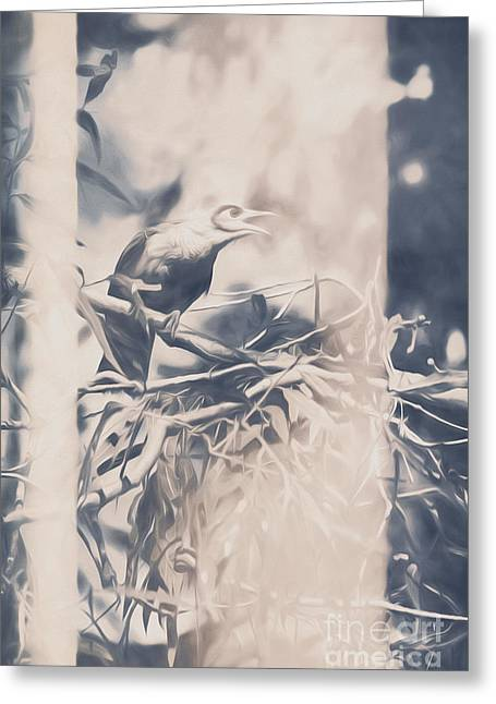 Natures Call Greeting Card by Jorgo Photography - Wall Art Gallery