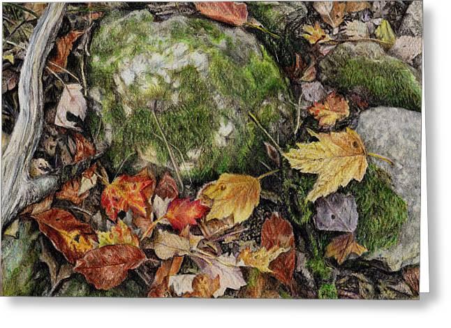 Nature's Confetti Greeting Card by Shana Rowe Jackson