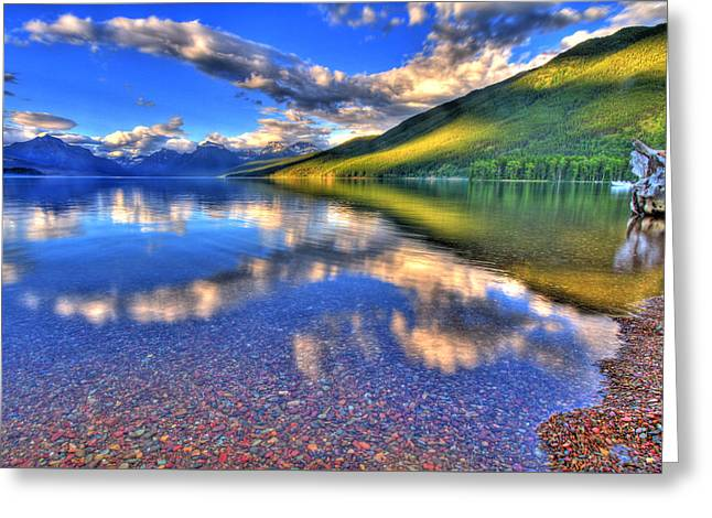 Western Western Art Greeting Cards - Natures Designs Greeting Card by Scott Mahon