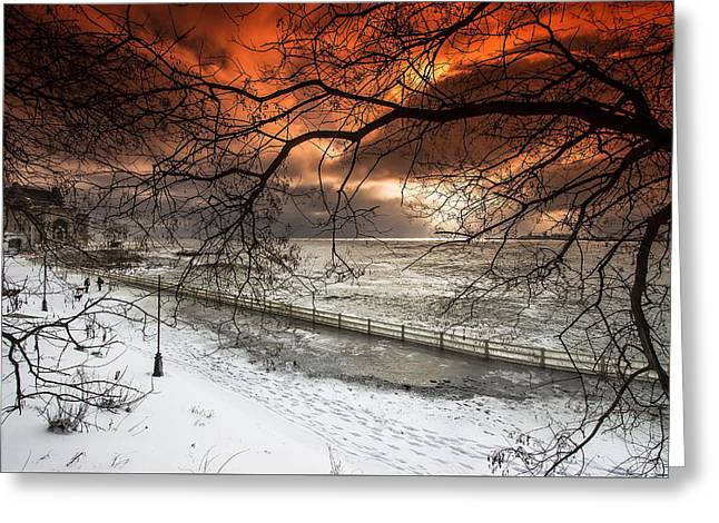 Winter Storm Greeting Cards - Natures Drama Greeting Card by Dan Cristian Mihailescu