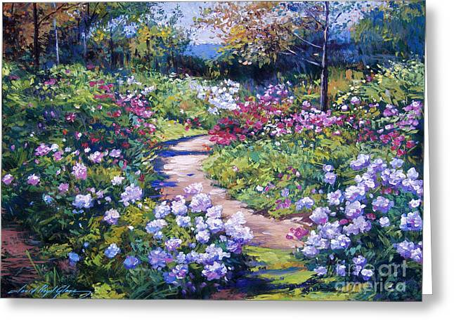 Pathways Greeting Cards - Natures Garden Greeting Card by David Lloyd Glover