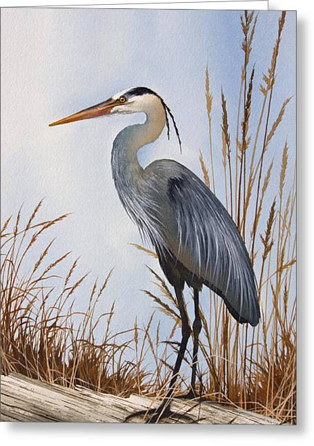 Wildlife Watercolor Greeting Cards - Natures Gentle Beauty Greeting Card by James Williamson