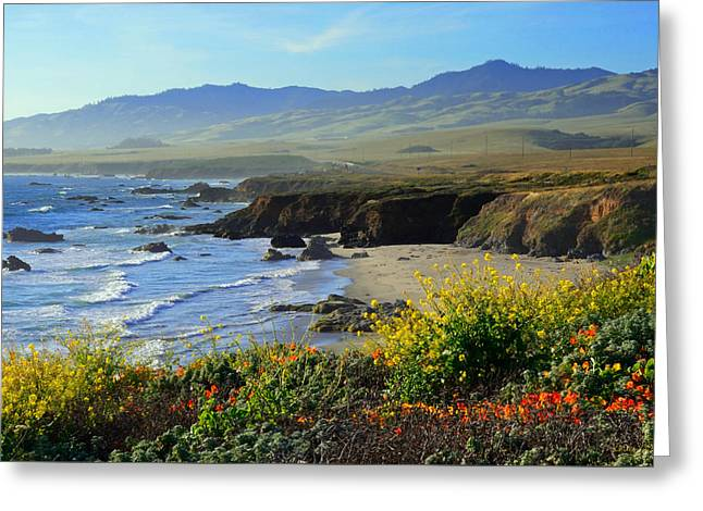 California Ocean Photography Greeting Cards - Natures Landscape 2 Greeting Card by Kathy Yates