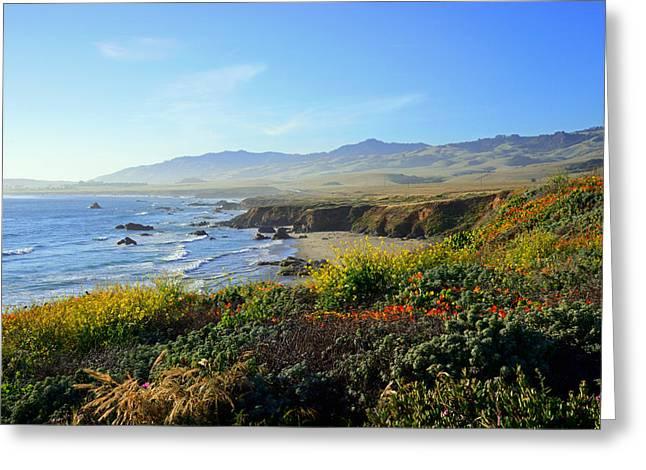 San Simeon Greeting Cards - Natures Landscape Greeting Card by Kathy Yates