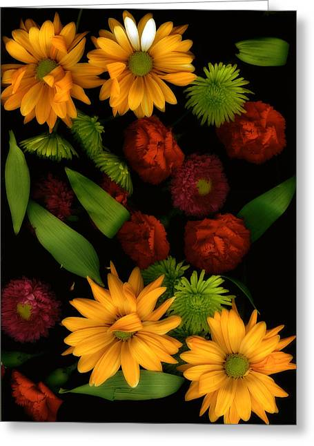 Ruffled Petals Greeting Cards - Natures Song Greeting Card by Bonnie Bruno
