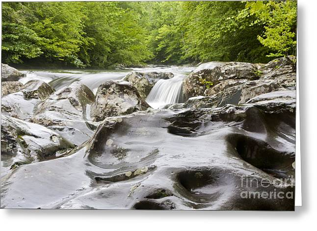 Tennessee River Greeting Cards - Natures Touch Greeting Card by Finesse Fine Art