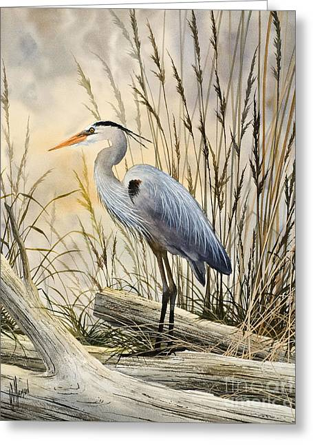 Heron.birds Greeting Cards - Natures Wonder Greeting Card by James Williamson