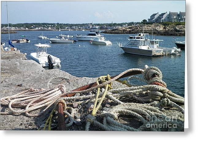 New England Village Greeting Cards - Nautical Knots Greeting Card by Gina Sullivan