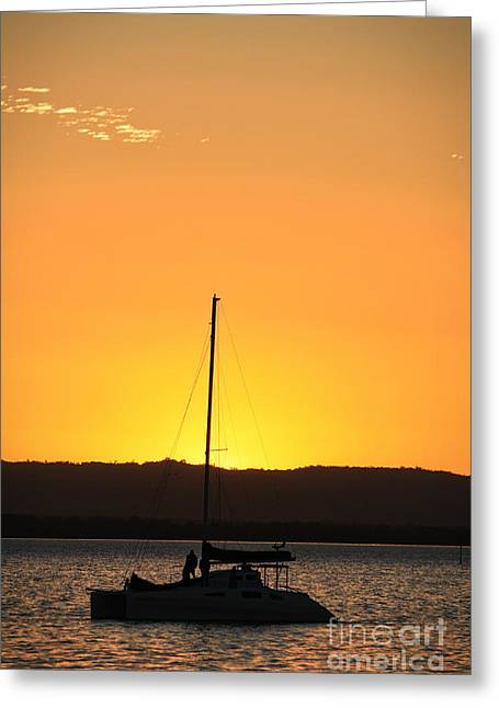 Nautical Sun Worshipper Greeting Card by Trudee Hunter