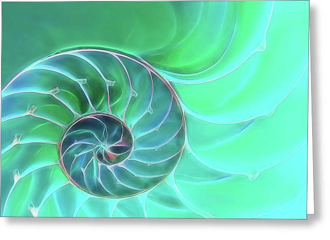 Nautilus Aqua Spiral Greeting Card by Gill Billington