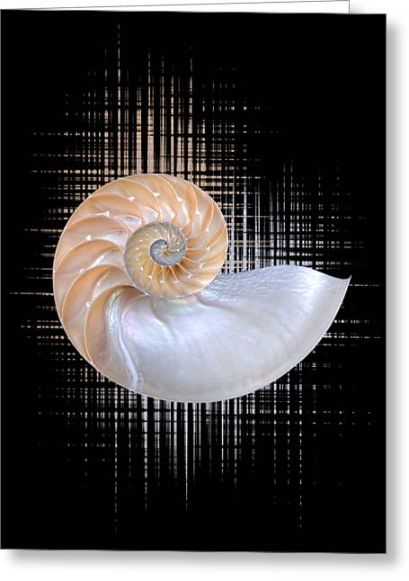 Geometric Artwork Greeting Cards - Nautilus Seashell Abstract - Vertical Greeting Card by Gill Billington