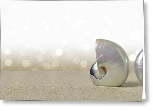 Shell Texture Greeting Cards - Nautilus shells Greeting Card by Stela Knezevic