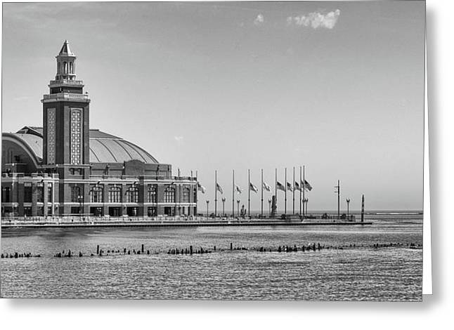Navy Pier Greeting Card by William Doree