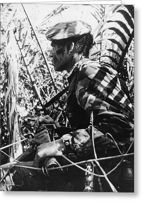 Navy Seal In Mekong Delta Greeting Card by Underwood Archives