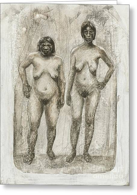 Human Existence Greeting Cards - Neanderthal And Homo Sapiens Greeting Card by Kennis & Kennis/MSF
