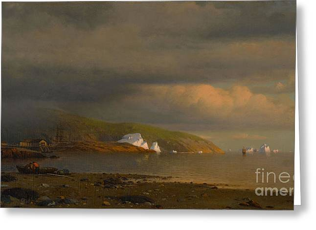 1874 Greeting Cards - Near Cape St Johns Coast of Labrador Greeting Card by MotionAge Designs