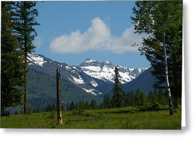 Alberta Foothills Landscape Greeting Cards - Near Sparwood British Columbia  Greeting Card by Jeff  Swan
